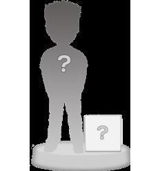Figurine personnalisée 1 personne + accessoire taille M