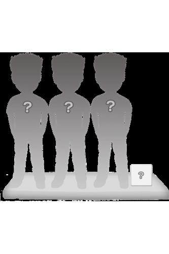 100% personalizierte 3 personen Figuren + Zubehörteil Größe S