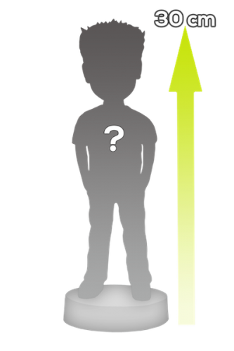 Figura personalizada giganta 1 persona (100%) - 30 cm Alto