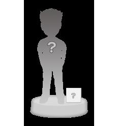 Figurina 1 Persona 100% personalizzabile + accessorio S