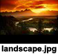 paysage-2-300x300